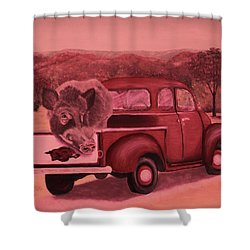 Ridin' With Razorbacks 3 Shower Curtain by Belinda Nagy