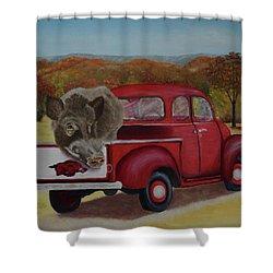 Ridin' With Razorbacks Shower Curtain by Belinda Nagy