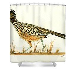 Roadrunner Bird Shower Curtain by Juan Bosco