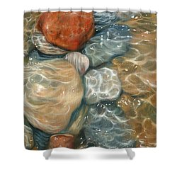 Rockpool Shower Curtain by David Stribbling