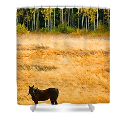 Rocky Mountain Autumn Graze Shower Curtain by James BO  Insogna