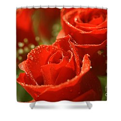 Romance Shower Curtain by Cheryl Young