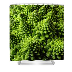 Romanesco Broccoli Shower Curtain by Garry Gay