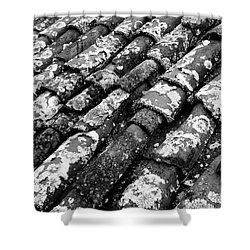 Roof Tiles Shower Curtain by Gaspar Avila