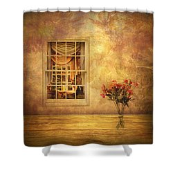 Room With A View Shower Curtain by Jessica Jenney