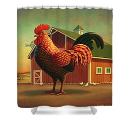 Rooster And The Barn Shower Curtain by Robin Moline