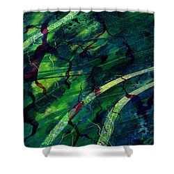 Root Canal Shower Curtain by Rachel Christine Nowicki