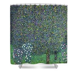 Roses Under The Trees Shower Curtain by Gustav Klimt
