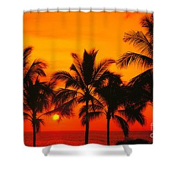 Row Of Palms Shower Curtain by Bill Schildge - Printscapes