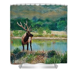 Royal Velvet Shower Curtain by Mary Benke