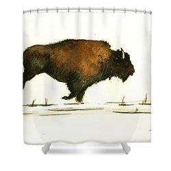 Running Buffalo Shower Curtain by Juan  Bosco