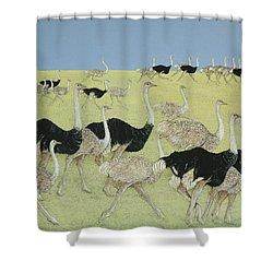 Rush Hour Shower Curtain by Pat Scott