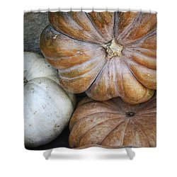 Rustic Pumpkins Shower Curtain by Joan Carroll