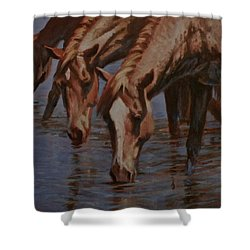 Salt River Redheads Shower Curtain by Mia DeLode