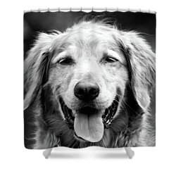 Sam Smiling Shower Curtain by Julie Niemela