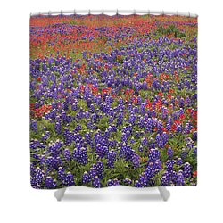 Sand Bluebonnet And Paintbrush Shower Curtain by Tim Fitzharris