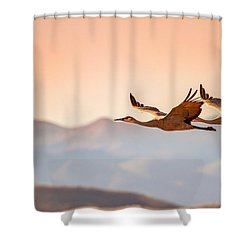 Sandhill Cranes Flying Over New Mexico Mountains - Bosque Del Apache, New Mexico Shower Curtain by Ellie Teramoto