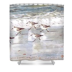 Sandpipers On Siesta Key Shower Curtain by Shawn McLoughlin