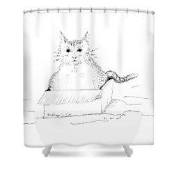 Schrodinger Cat Shower Curtain by Regina Valluzzi