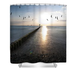 Sea Birds Sunset. Shower Curtain by Nathan Wright