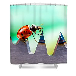 Sea Of Pain Shower Curtain by TC Morgan