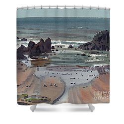 Seal Rock Oregon Shower Curtain by Donald Maier