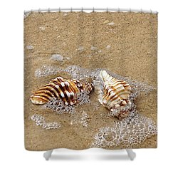 Seashells And Bubbles 2 Shower Curtain by Kaye Menner