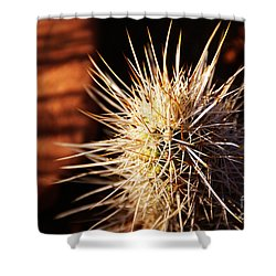 Sedona Shower Curtain by Linda Knorr Shafer