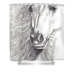 Serenity Shower Curtain by Kate Black