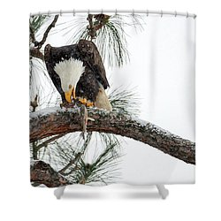 Share The Wealth Shower Curtain by Mike Dawson