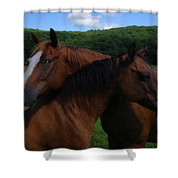 She Is Mine Shower Curtain by Karol Livote