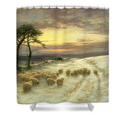 Sheep In The Snow Shower Curtain by Joseph Farquharson