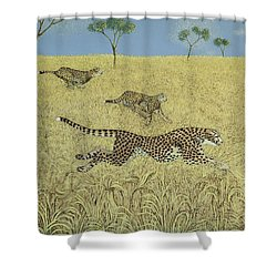 Sheer Speed Shower Curtain by Pat Scott