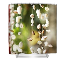 Shell Windchimes Shower Curtain by Kyle Rothenborg - Printscapes
