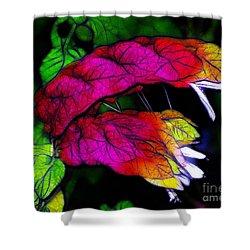 Shrimp Plant Shower Curtain by Judi Bagwell