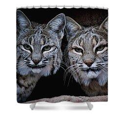 Side By Side Shower Curtain by Elaine Malott