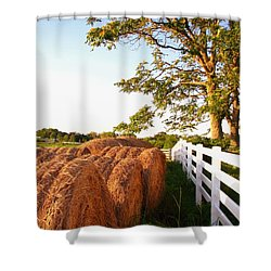 Side-by-side Shower Curtain by Todd A Blanchard