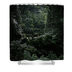 Silence Is Round Me   - Mokulehua Shower Curtain by Sharon Mau