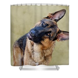 Silly Boy Shower Curtain by Sandy Keeton