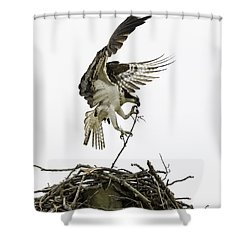Sky Ballet Shower Curtain by Everet Regal