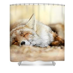 Sleeping Beauty -red Fox In Rest Shower Curtain by Roeselien Raimond