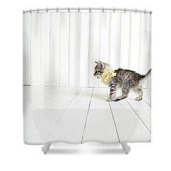 Small Shower Curtain by Amy Tyler