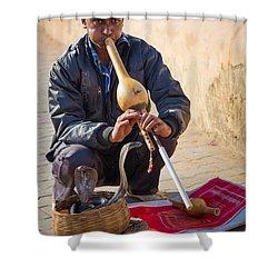Snake Charmer Shower Curtain by Inge Johnsson