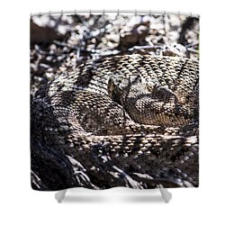 Snake In The Shadows Shower Curtain by Chuck Brown