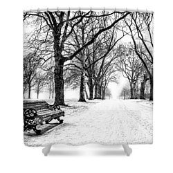 Snow Day Shower Curtain by Dominic Piperata