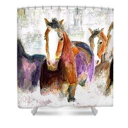 Snow Horses Shower Curtain by Frances Marino