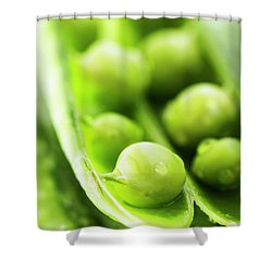Snow Peas Or Green Peas Seeds Shower Curtain by Vishwanath Bhat