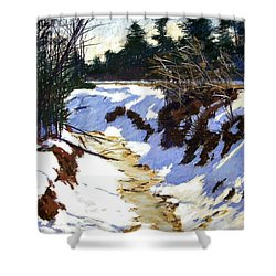 Snowy Ditch Shower Curtain by Mary McInnis