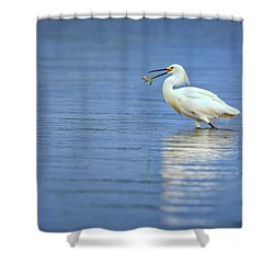 Snowy Egret At Dinner Shower Curtain by Rick Berk