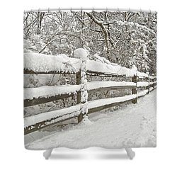 Snowy Morning Shower Curtain by Michael Peychich